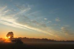Lettland Lubana fängt Sonnensatz auf Stockbilder