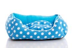 Letto blu dell'animale domestico Immagine Stock