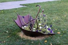 Letto con i fiori nella caduta Immagini Stock