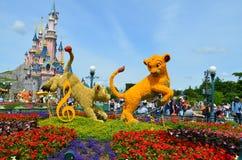Letto di fiore in Disneyland Parigi Fotografia Stock