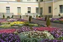 Letto di fiore vicino al grande palazzo di Pavlovsk Immagine Stock