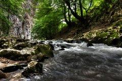 Letto di fiume Fotografia Stock