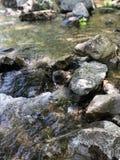 Letto di fiume fotografie stock