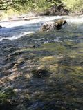 Letto di fiume immagini stock