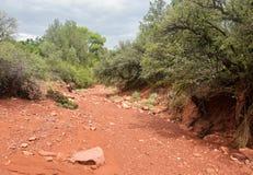 Letto di fiume asciutto Arizona Fotografie Stock Libere da Diritti
