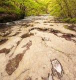 Letto di fiume asciutto della pavimentazione di calcare fotografie stock