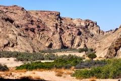 Letto di fiume asciutto in Namib Fotografia Stock Libera da Diritti