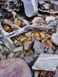 Letto di fiume di media misti fotografie stock libere da diritti