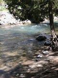 Letto di fiumi fotografia stock libera da diritti