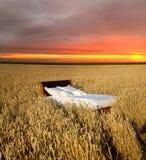 Letto in un campo di grano immagine stock