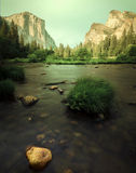 Letto in Yosemite immagine stock