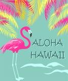 Lettrage d'Aloha Hawaii d'esprit d'impression de mode de T-shirt, palmettes et flamant rose Conception plate Photo stock