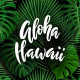 Lettrage de brosse d'Aloha Hawaii Photo libre de droits