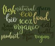 Lettrage de main réglé : naturel, vegan, organique, eco, bio, menu, gluten Photo libre de droits