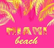 Lettrage de Miami pour la copie de T-shirt avec les palmettes jaunes sur le fond rose illustration stock