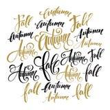 Lettrage de style de saison Élément de conception graphique de calligraphie Chute, ensemble d'automne Illustration de vecteur illustration de vecteur