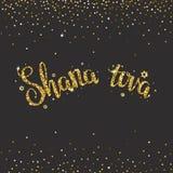 Lettrage manuscrit d'or de scintillement avec le texte et le x22 ; Tova& x22 de Shana ; Photographie stock libre de droits