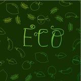 Lettrage tiré par la main d'Eco avec le fond de fruits et légumes illustration stock