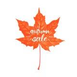 Lettrage tiré par la main d'une expression Autumn Sale Illustration de vecteur d'isolement sur le blanc Forme de feuille d'érable illustration de vecteur