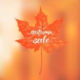 Lettrage tiré par la main d'une expression Autumn Sale Vecteur Illustratio illustration de vecteur