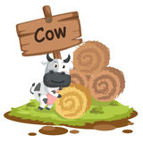 Lettre animale C d'alphabet pour la vache Photographie stock