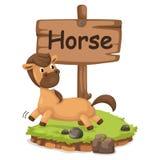 Lettre animale H d'alphabet pour le cheval illustration stock