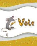 Lettre animale V d'alphabet et campagnol Photographie stock libre de droits