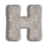 Lettre décorative H de fourrure Photo stock