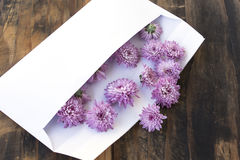 Lettre d'amour avec des fleurs sur le fond en bois rustique Image libre de droits