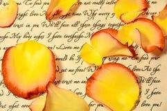 Lettre d'amour avec des pétales de Rose Photos stock