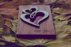Lettre d'amour en automne Image libre de droits