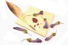 Lettre d'amour scellée par cire avec la cannette d'isolement Image stock
