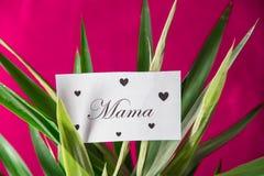 Lettre de jour de mères Image libre de droits