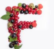 lettre du fruit juteux F image stock