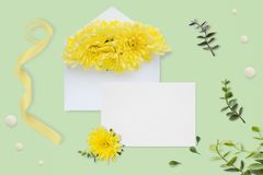 Lettre, enveloppe et un présent sur le fond vert en pastel Cartes d'invitation de mariage ou lettre d'amour avec des chrysanthème Photographie stock