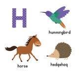 Lettre H Alphabet de bande dessinée pour des enfants dirigez le cheval animal d'illustration, hérisson, colibri Image stock