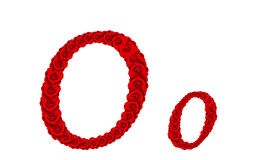 Lettre O et o d'alphabet faits à partir des fleurs de rose de rouge d'isolement sur le fond blanc Photographie stock libre de droits