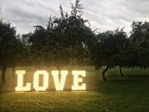 Lettres au néon d'amour en parc Image libre de droits