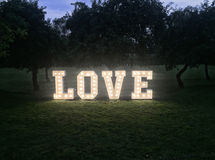 Lettres au néon d'amour en parc Photographie stock libre de droits