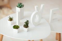 Lettres blanches sur le fond intérieur de volume Les Succulents dans des pots blancs se tiennent sur une table Image libre de droits