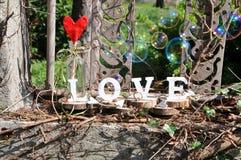 Lettres définissant l'amour de mot Photo libre de droits
