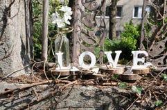 Lettres définissant l'amour de mot Photos stock