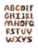 Lettres d'alphabet dans la forme des chiens Illustration de Vecteur