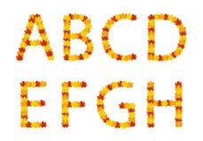 Lettres d'alphabet de lames d'automne Image libre de droits