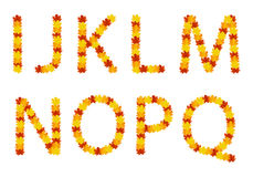 Lettres d'alphabet de lames d'automne Photos libres de droits