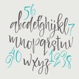 Lettres d'alphabet : minuscule, majuscule, nombres Alphabet de vecteur Lettres tirées par la main Lettres de l'alphabet écrit ave Photo libre de droits