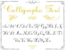 Lettres d'alphabet, police tirée par la main de calligraphie Alphabet de vecteur Remettez les lettres écrites de l'alphabet et de Image libre de droits