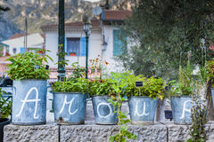Lettres d'amour d'intrigue amoureuse écrites sur des vases à fleur Image libre de droits