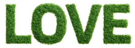 Lettres d'amour de croissance d'herbe d'isolement Photographie stock libre de droits