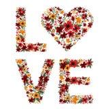 Lettres d'amour des fleurs illustration stock